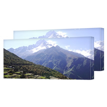 2 Identical 50 x 100cm (20 x 40in) Canvas incl Delivery